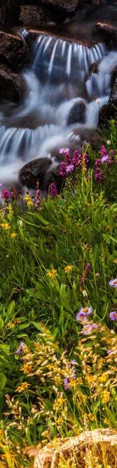 taylor creek colorado  -  photo by thomas o'brien   www.tmophoto.com