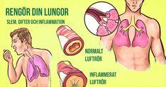 För mycket slem i lungorna kan nämligen vara jobbigt för dina lungor, samt orsaka feber, trötthet och andningssvårigheter.