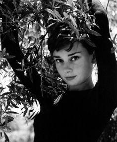 Timeless Beauty: Audrey Hepburn