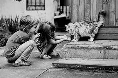 niños-gatos-jugando-5__880