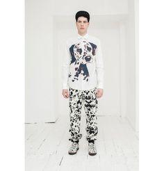 dalmata fashion collection
