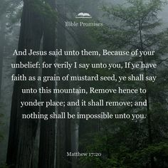 """He replied, """"Because you have so little faith. I tell you the truth, if you have faith as small as a mustard seed, you can say to this mountain, 'Move from here to there' and it will move. Nothing will be impossible for you."""""""