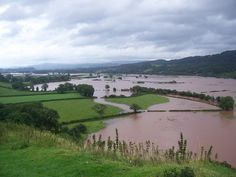 Flood risks could be reduced simply by planting trees on floodplains, according to a new study:  http://bit.ly/1XW6Ftx