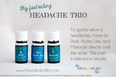 My Young Living Oil Headache Trio - Basil, Marjoram, and Aroma Siez (these oils are also part of the Raindrop Kit)