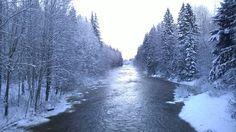 Freezy day at Pitkäkoski