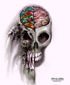 Left Right Brain Illustrations