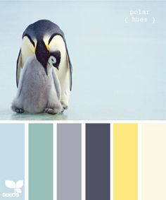 blue, slate, yellow - if I ever change our navy & yellow scheme this would still work with our yellow walls!