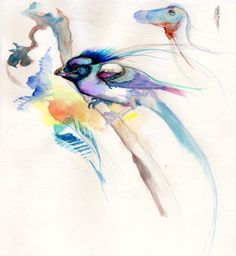"""""""middle bird"""" Natural History, Watercolor Tattoo, Middle, Bird, Nature, Naturaleza, Birds, Nature Illustration, Off Grid"""