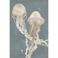 Jellyfish Dance I' Painting Print on Wrapped Canvas