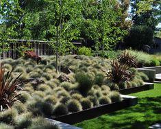 Modern Tropical Courtyard - tropical - landscape - vancouver - Glenna Partridge Garden Design