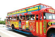 Travel to the wedding location in the Kukoo Kunuku bus