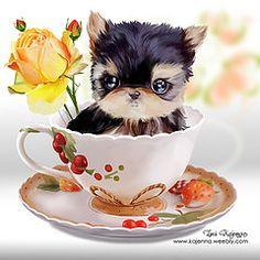 Yorkie (Kajenna) Tags: dog cup rose gift yorkshireterrierpuppy