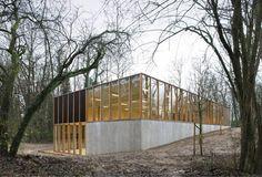 Nice concrete & timber sportshall: KAU Gymnasium by URA