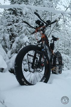 Fat Bike, Travel Images, Happiness, Journey, Pictures, Photos, Bonheur, Feeling Happy, Being Happy