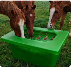 The Hay Saver - slow feeder Designed for field use, for minimal wastage and to promote healthy eating. This design has a slide on lid making it safe and very easy to use. It can also be used for soaking hay, and as a water trough in the summer months when hay feeding is not as common but horses are often put in new pastures.  All in one Feeding Station -  This feeder holds a small bale of hay and two buckets for feed or minerals. This Feeding Station ensures that horses are eating from a hea... Horse Slow Feeder, Hay Feeder For Horses, Horse Hay, Horse Behavior, Equestrian Supplies, Horse Farms, Farm Life, Horse Stuff, Water Trough