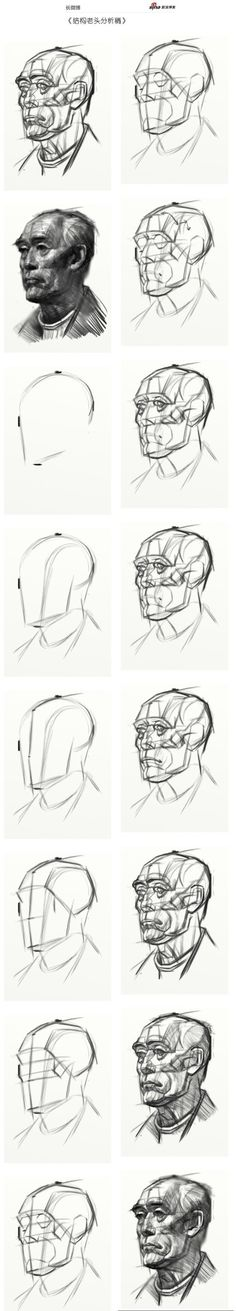 头部结构分析素描稿~转载于油画侠博客~h...