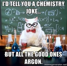 I like cats and nerdy humor, so these things are awesome.