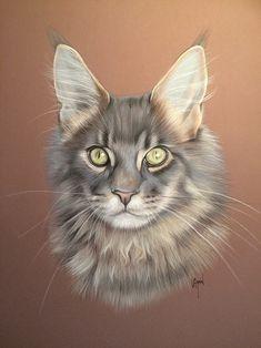 Cat Sketch, Color Pencil Art, Maine Coon, Cat Art, Pastel Colors, Colored Pencils, Coloring Books, Sculptures, Sketches