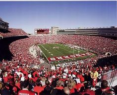 For those bettors that bet on both the colleges and the pros you will probably get most of them to tell you that college football, hands down, offers far more excitement. College football is a game of variety and excitement that even the NFL can't match. The Wisconsin Badgers is ready to bring it all in the table and give the other teams a tight fight. Bet on college football this season and you will be very pleased!     Visit: http://www.sportsbook.ag/football-betting/NCAA/