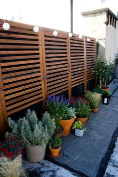 IKEA APPLARO Brown Stained Brown Wall panel, outdoor wall created using applaro wall panel from Ikea, comes with hooks for hanging plants - endless ideas for backdrop/altar area, etc Diy Privacy Fence, Privacy Fence Designs, Privacy Walls, Diy Fence, Privacy Wall Outdoor, Patio Privacy Screen, Outdoor Wall Panels, Fence Gate, Fence Panels