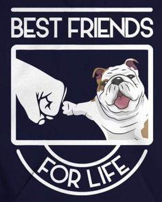 #Emily #EnglishBulldog #PuppyLove #Bulldog #MyConstantCompanion #justforfun