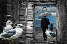 Weathering the Gulls is a Surreal Photographic by RandyNyhofPhotos