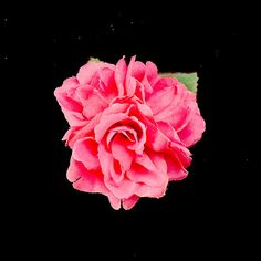 Pink Triple Roses Hair Flower:This is a triple pink rose hair flower. Lila-Jo writes, This pink sweet piece is a perfect touch when you want to love your hair. It's mounted to a flat double prong hair clip. This piece is about 3.5 at it's widest point. All Lila-Jo products are made with utmost care and highest quality materials. Everything is hand-made with the... $10.00