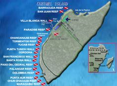 cozumel diving - Dive sites drop off into very deep water Cozumel Scuba Diving, Scuba Diving Gear, Cave Diving, Snorkeling, Cozumel Island, Big Island Hawaii, Visit Colombia, Colombia Travel, Southern Caribbean