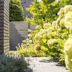 Umgestaltung eines Privatgarten in Korschenbroich - Leistungsbild