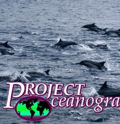 Project Oceanography