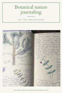 Botanical nature journaling helps us to slow down and sketch plants smaller than our hands, forcing our brains to record the world around us in minute detail - mindfully.