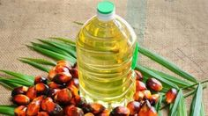 Ukraine promptly increases palm-oil import