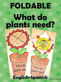 foldable what do plants need? English-Spanish - you can buy a downloadable pdf for $1 to use at your market's kid area