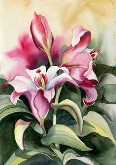 Amy Hautman - Lala Lilies