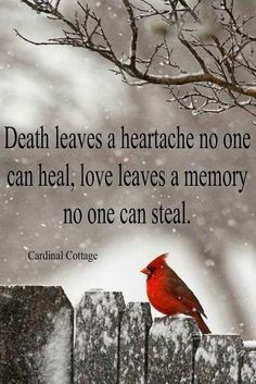 After the loss of your mother, Mother's Day can be full of heartache, so we found the best beautiful quotes about missing mom who passed away to help children dealing with grief after their mom's death. Sympathy Quotes, Sympathy Cards, Sympathy Messages, Phrase Choc, Grieving Quotes, Miss You Mom, When You Believe, Life Quotes Love, Family Quotes