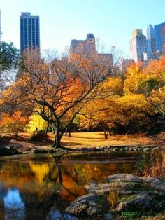 Another beautiful autumn day in Central Park. #nyc #ny