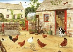 Happy Hens, Tracy Hall