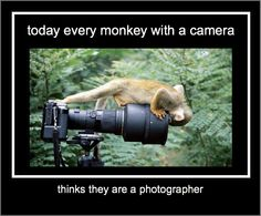 today every monkey with a camera thinks they are a photographer...