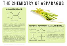 The chemicals behind the effect of asparagus on urine. Click the 'visit site'…