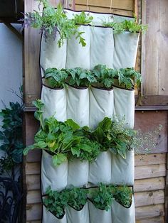 Hanging cloth shoe organizer...what a great idea for an herb garden in our small space!