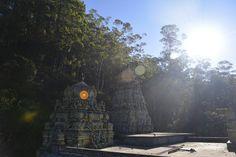 Mountains #cow#windmill#powermill#ambewela #farm#newzelandcow #bluemountian #mountain #blue#nuwaraeliya #misty #greenfield #green#trees#beautiful #wonderful #wonderland #highcountry #nature #view #pines #amazing #cold #woods#forest #photography #vintagesrilanka#ig_countryside #ig_srilanka#whpthelittlethings