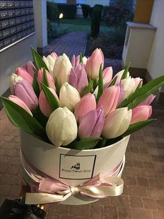 Tulips Flowers, Flowers Nature, Pretty Flowers, Planting Flowers, Flower Box Gift, Flower Boxes, My Flower, Beautiful Flower Arrangements, Floral Arrangements