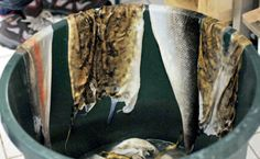 Tanning of Fish Skin - FLAG Österbotten - FI | Maritime Affairs and Fisheries – FARNET