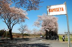 Kamiseya   http://mw2.google.com/mw-panoramio/photos/medium/51196728.jpg