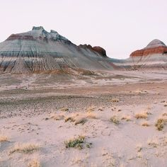 pink, indie, and desert image