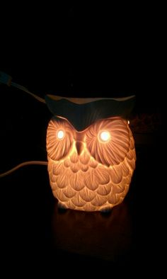 My new Whoot warmer! #Scentsy #fragrance  Http://scentscentral.Scentsy.us