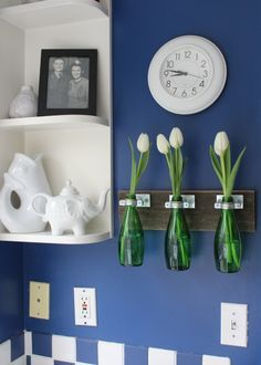 perrier bottle vases love that case hanging from the wall idea!!! So pretty in a kitchen to add some life!