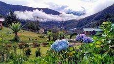 These are some of the breathtaking landscapes you'll find in Nariño, one of the southern regions in #ColombiaisMagicalRealism. Photo: @mercedes.kershner 📸 Estos son algunos de los sorprendentes paisajes que encontrarás en #Nariño, una de las regiones al sur de #ColombiaEsRealismoMágico #Colombia #Travel #Amazing #Backpacker #Tourist #Tourism #Landscapes #IgersColombia #Colombia_GreatShots #Instatravel #Travelgram #PicOfTheDay #WanderLust #BestPlacesToGo #NatGeoTravel #LatinAmerica…