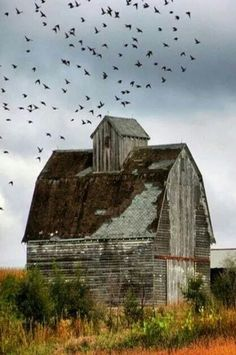 ♂ Aged with beauty abandoned Long Forgotten Barn Old Abandoned Houses, Abandoned Buildings, Abandoned Places, Old Houses, Farm Houses, Farm Barn, Old Farm, Country Barns, Country Roads