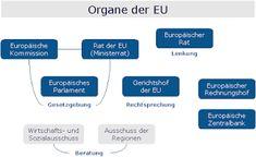Feldkirch, Self, Civil Society, Textbook, Biology
